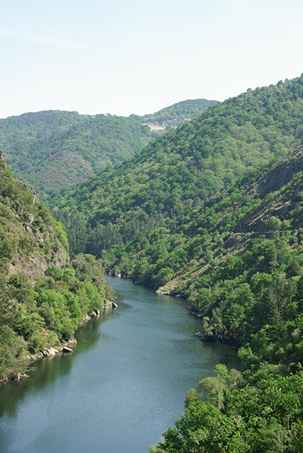 Moving forward on Ribeira Sacra's nomination to be part of the World Heritage Site List.